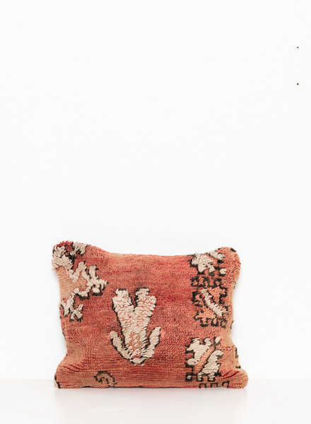 Special Vintage Pillow 504