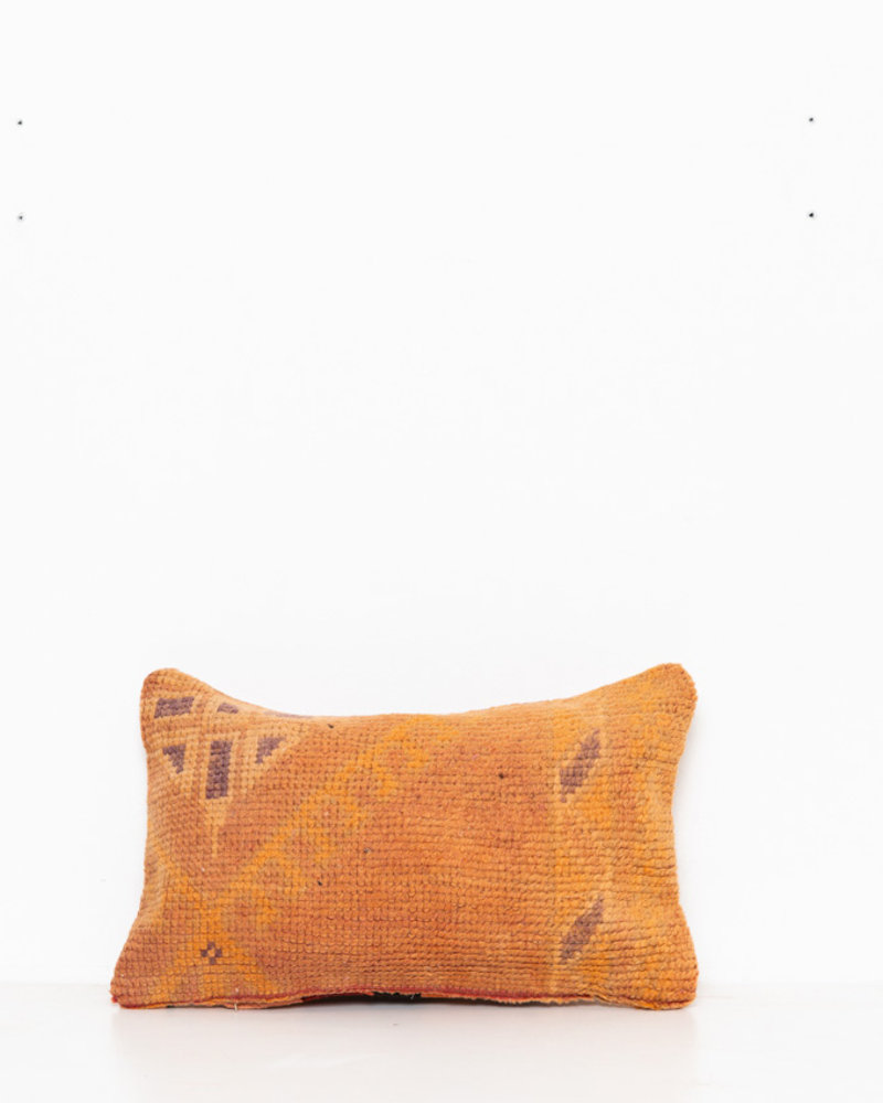 Special Vintage Pillow 512
