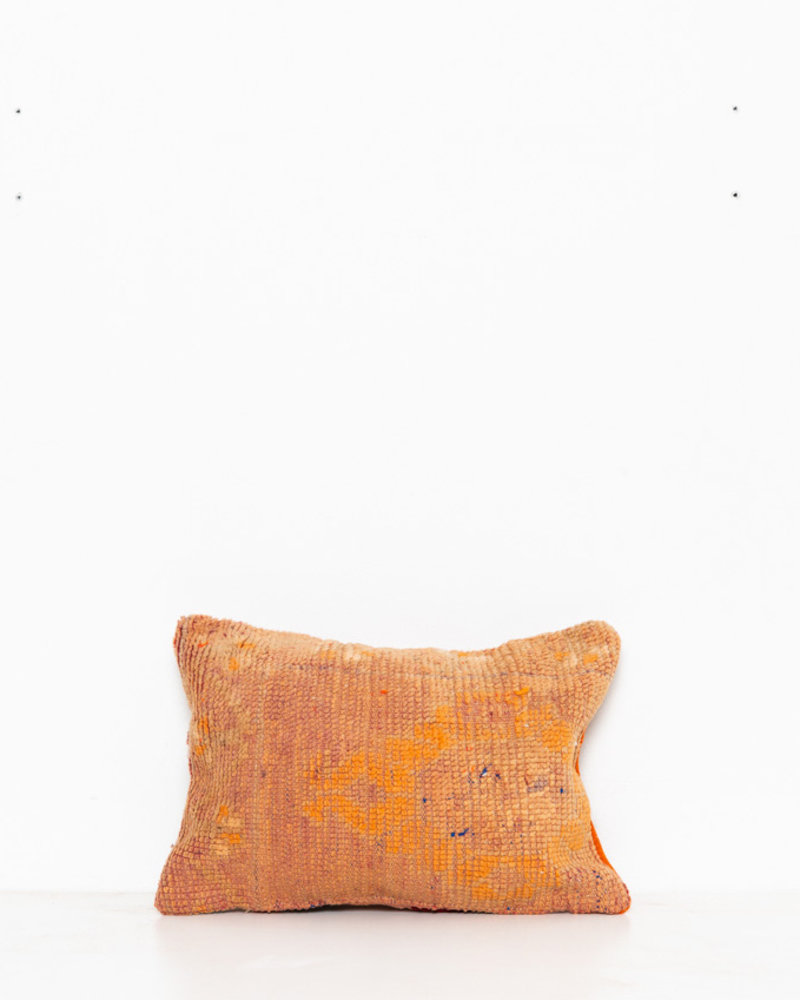Special Vintage Pillow 515