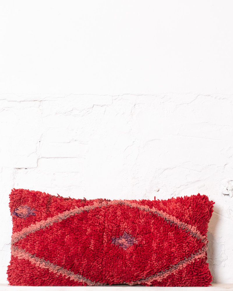 Special Vintage Pillow 529