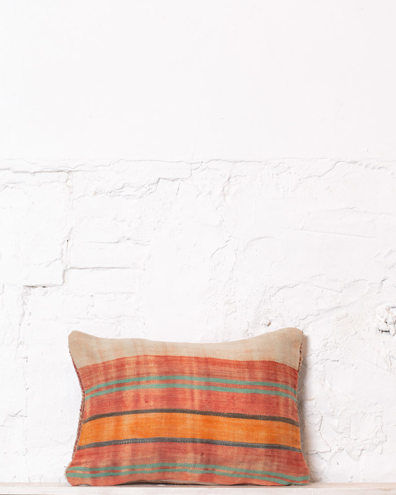 Special Vintage Pillow 530