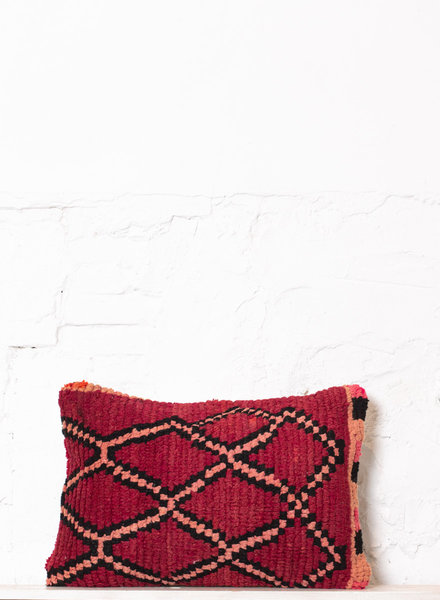 Special Vintage Pillow 540