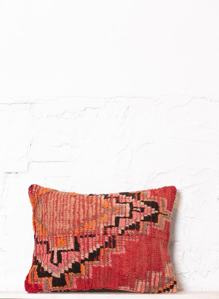 Special Vintage Pillow 553