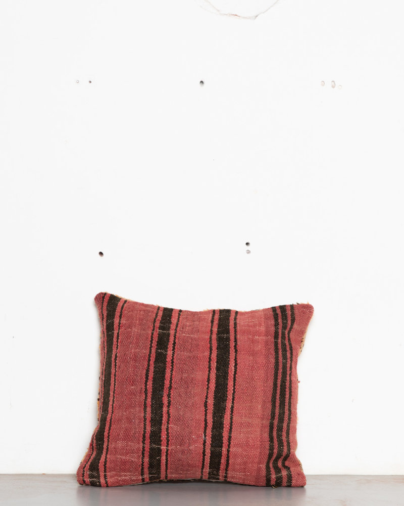 Special Vintage Pillow 561