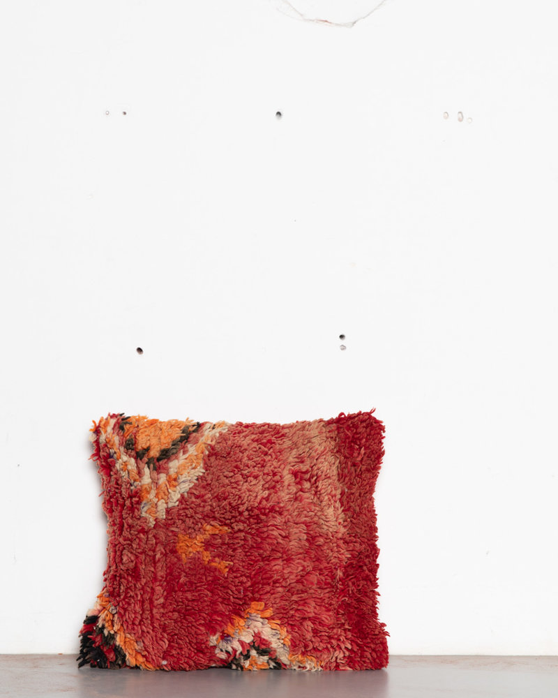 Special Vintage Pillow 565