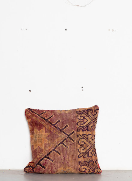 Special Vintage Pillow 573