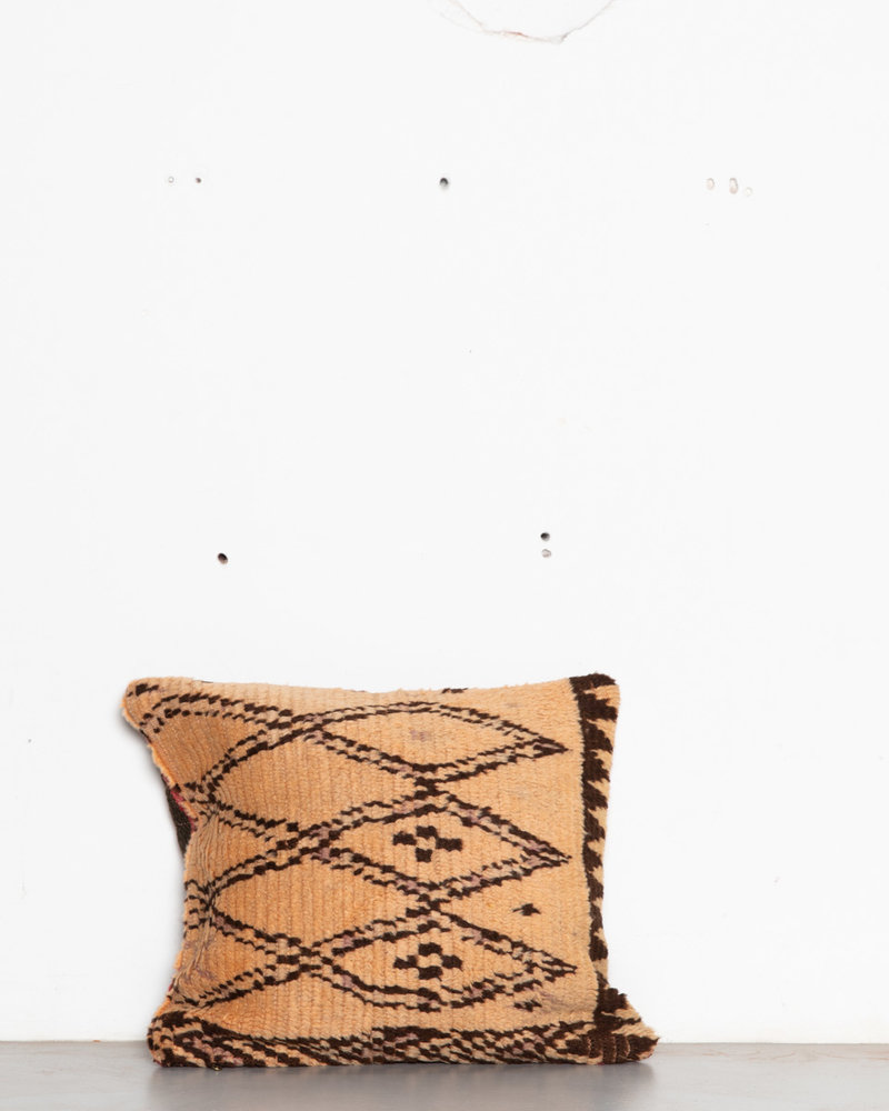 Special Vintage Pillow 585