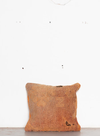 Special Vintage Pillow 588