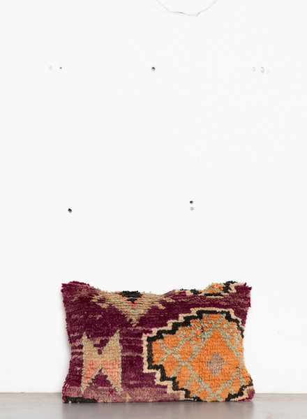 Special Vintage Pillow 589
