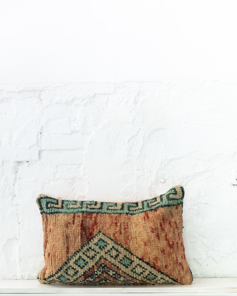Special Vintage Pillow 640