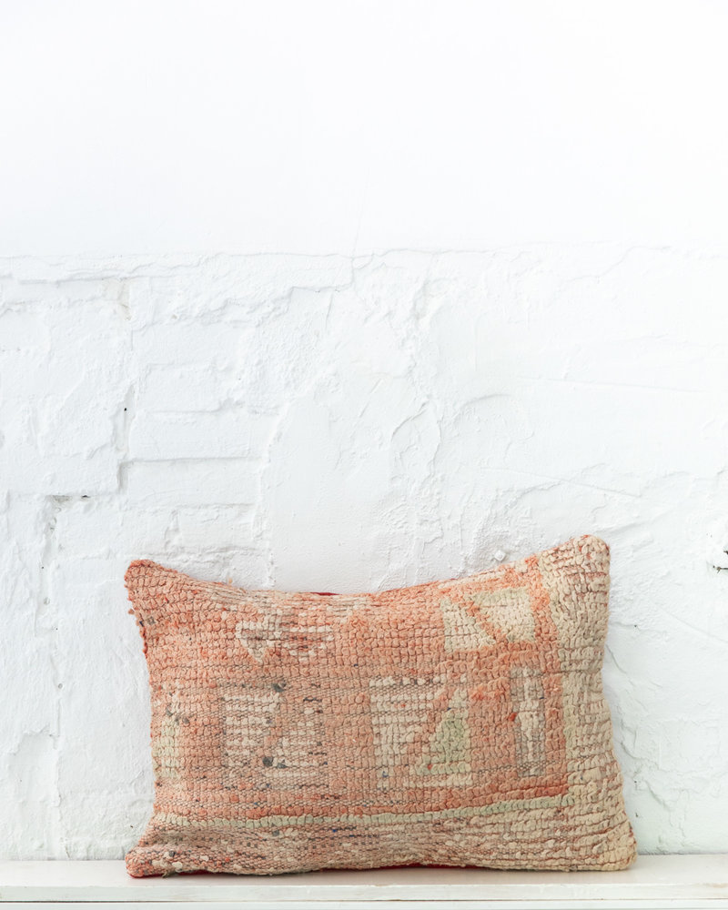 Special Vintage Pillow 644