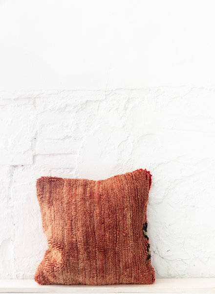 Special Vintage Pillow 700