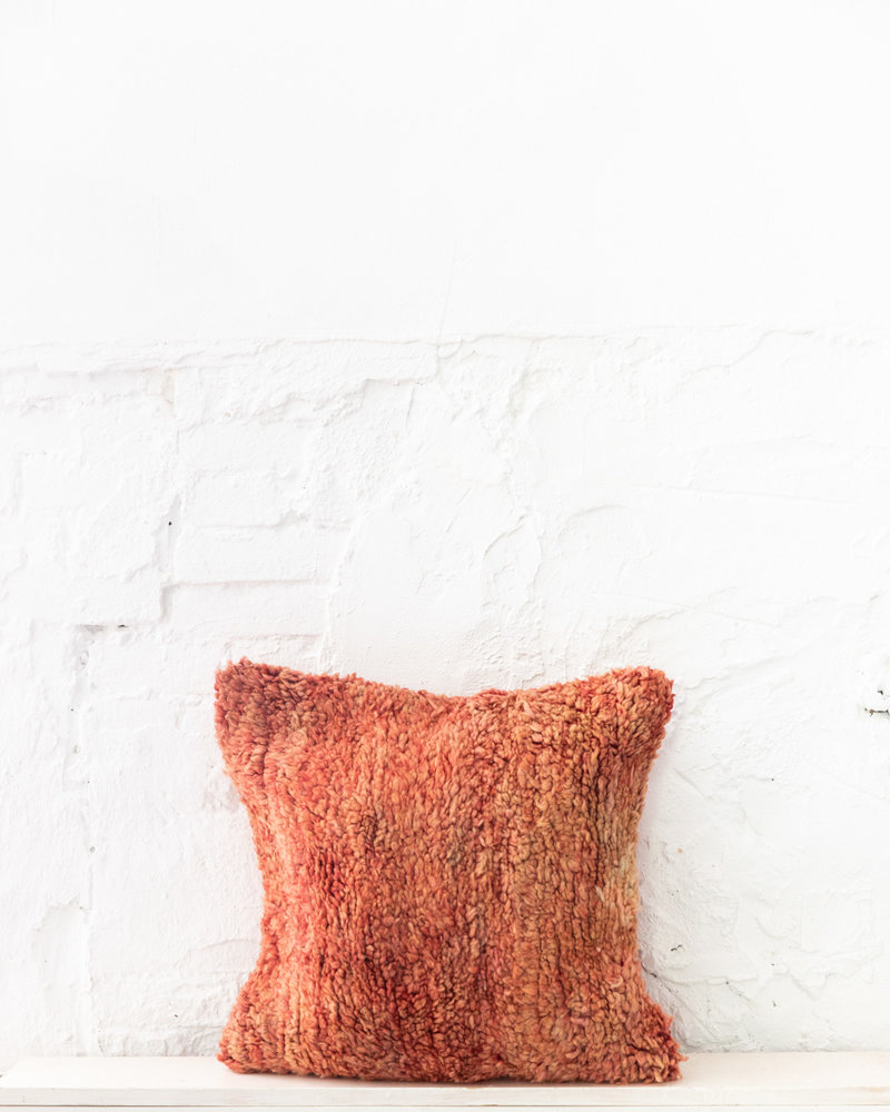 Special Vintage Pillow 704