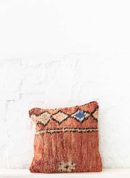 Special Vintage Pillow 717