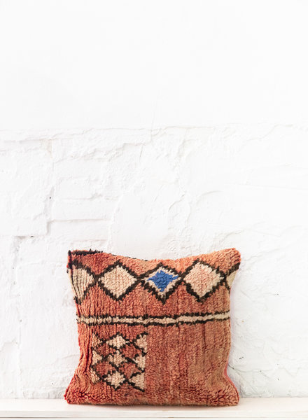 Special Vintage Pillow 701