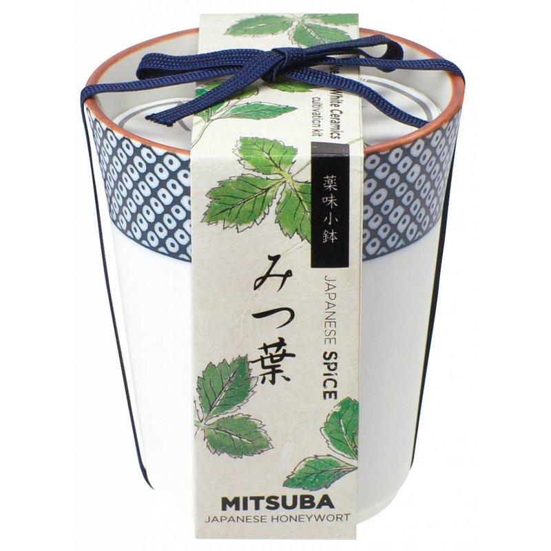 Yakumi Japanese spice jars
