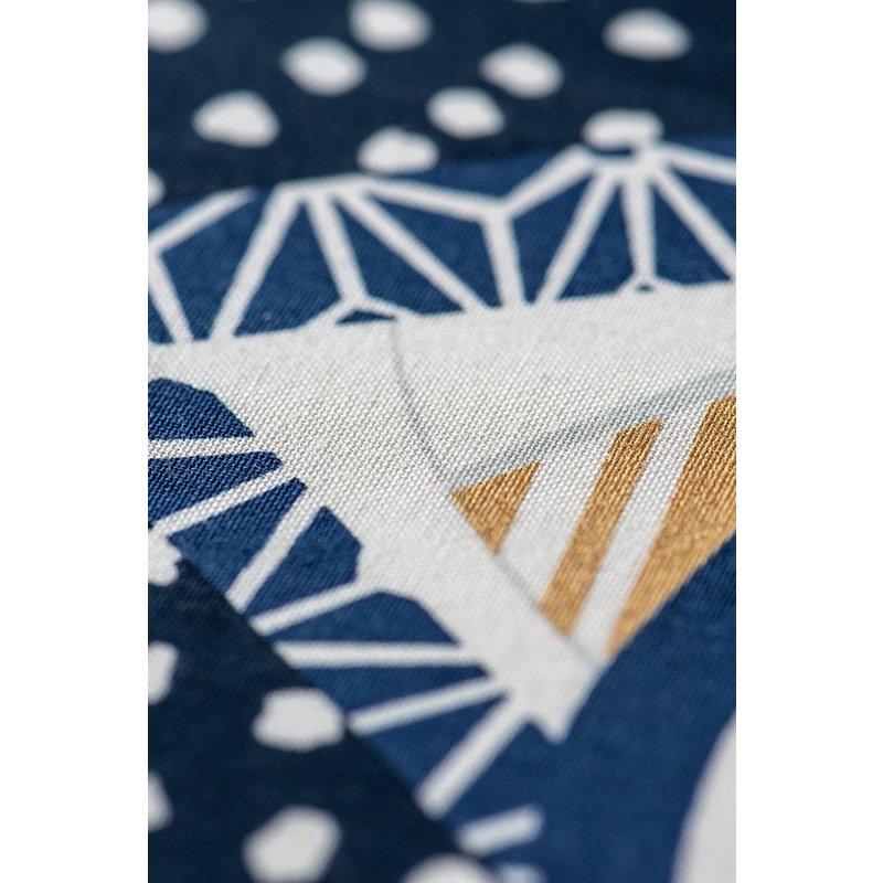 Japanese koinobori, carp flag, boy