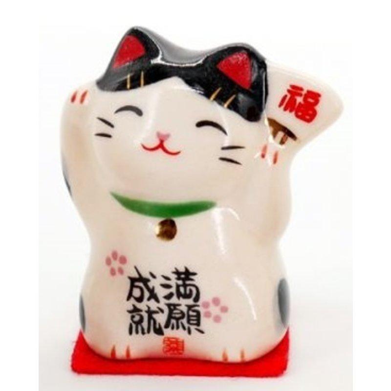 Maneki Neko Japanese lucky kitten
