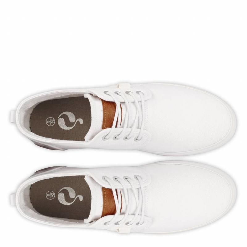 Q1905 Men's Sneaker Noordwijk White