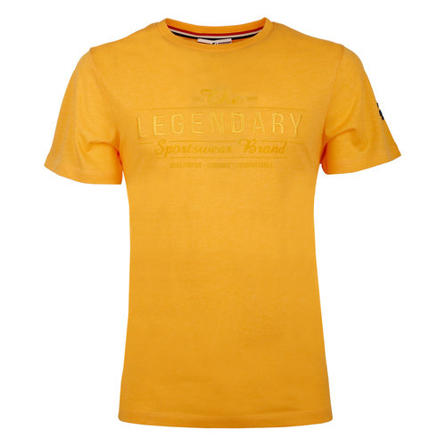 Men's T-shirt Texel  -  Ochre Yellow