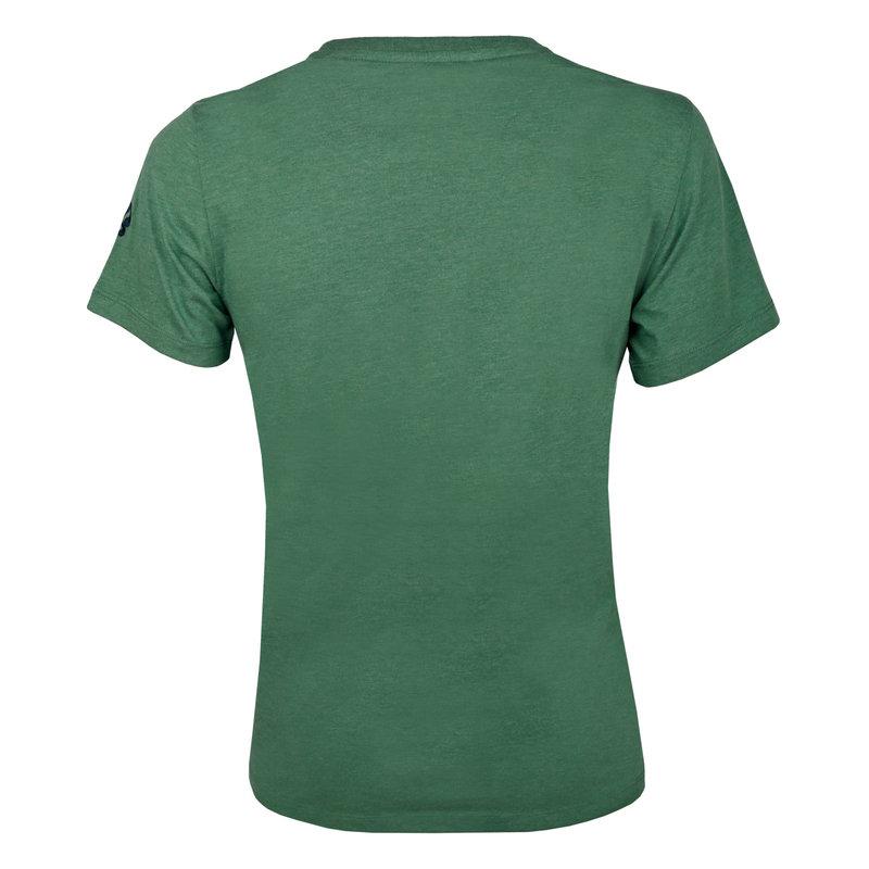 Q1905 Heren T-shirt Texel  -  Zeegroen