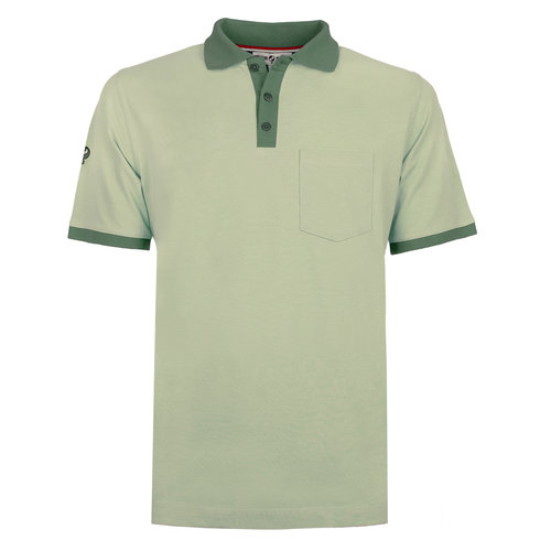 Men's Polo Bruinisse - Light Grey-green