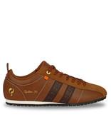Q1905 Men's Sneaker Typhoon Sp  -  Cognac