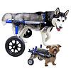 Rolstoel voor gehandicapte hond
