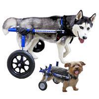 thumb-Rolstoel voor gehandicapte hond-1