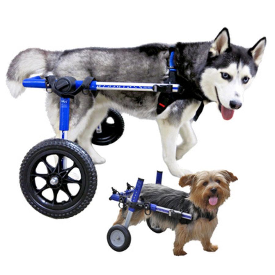 Rolstoel voor gehandicapte hond-1