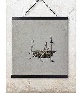 Poster | GRASSHOPPER | 50x50cm