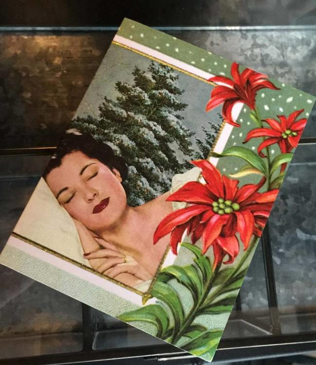 Nap set of 10 Christmas Cards Anne Taintor