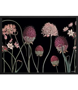 Vanilla Fly Poster Allium | 30x40