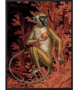 Vanilla Fly Poster Monkey Orange | 20x25cm