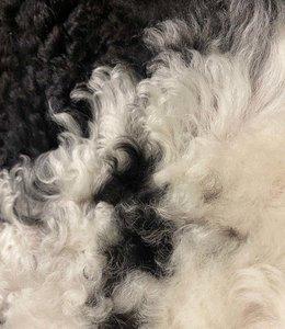 Dyreskinn Lambskin Tibetan | mottled