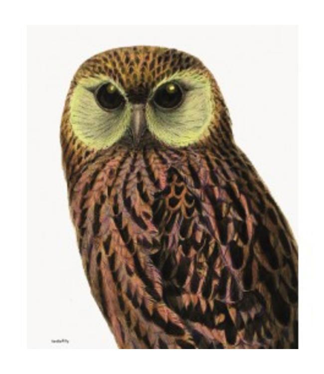 Vanilla Fly Retro Print GREEN EYED OWL