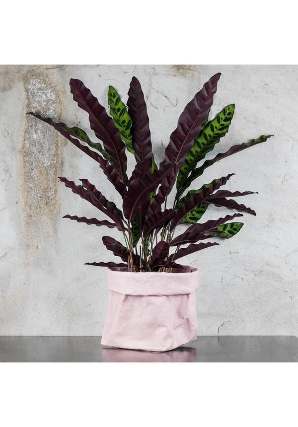 Paper Bag Quarzo Rosa