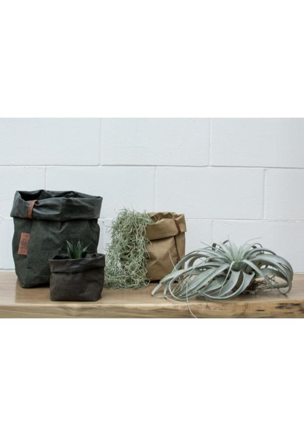 Paper Bag Square Tec D. Green