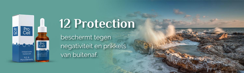 12 Protection, beschermt tegen negativiteit en prikkels van buitenaf.