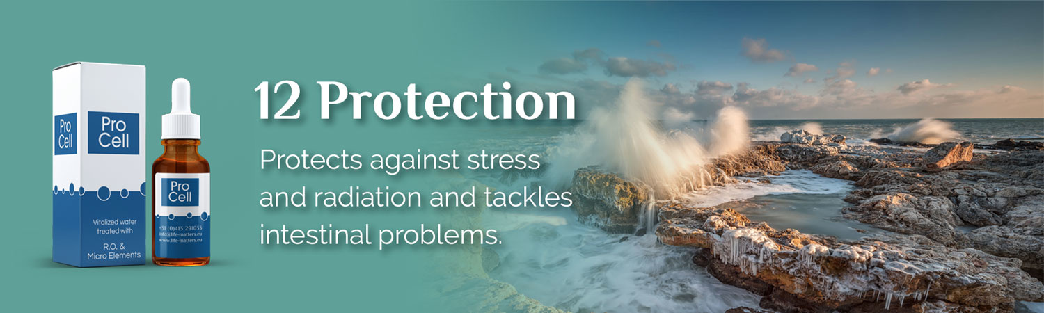 12 Protection. Protects against stress and radiation and tackles intestinal problems.