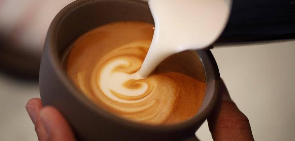 Geschuimde of gestoomde melk: wat is het verschil en hoe maak je ze?