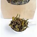 Van Bruggen Thee Juicy Melon - Groene thee