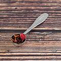 van Bruggen thee Wilde vruchten losse fruit/ijsthee