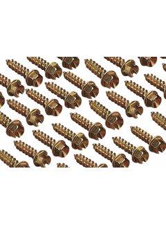Goldpro original Spikes ICE Screws