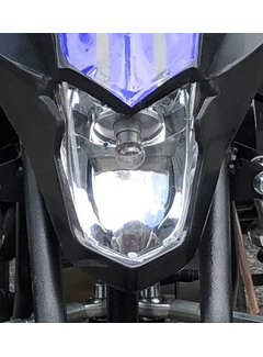 Actionbikes Kinder Elektro Miniquad Fox XTR Scheinwerfer