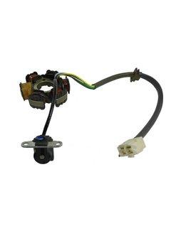 Actionbikes Mini Quad 110cc / 125cc Lichtmaschine (6 Wicklungen/Motor mit Rückwärtsgang anschluß rechteckiger