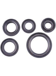 Wingsmoto Dichtringe Simmering Oil Seal Set 50 70 90 110 125cc Dirt Pit Bike Kinderquad