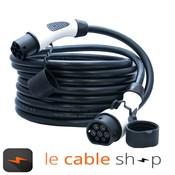 DOSTAR Câble de recharge véhicule électrique 32A Triphasé Type 2 - Type 2 (8 mètres)