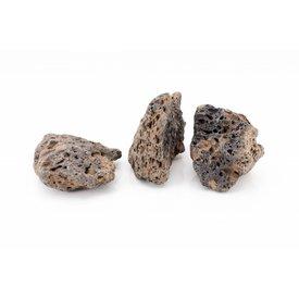 Galapagos Stein, 0.8-1.2kg