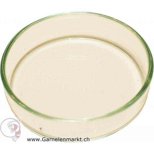 Garnelenmarkt Futterschüssel/Futterschale aus Glas